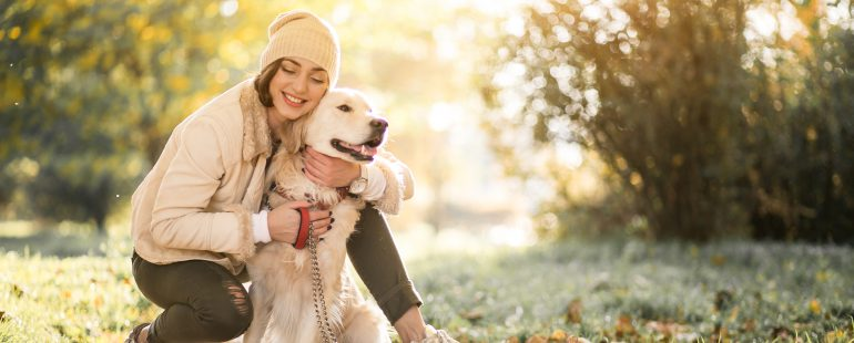 Cachorros de raça e pedigree