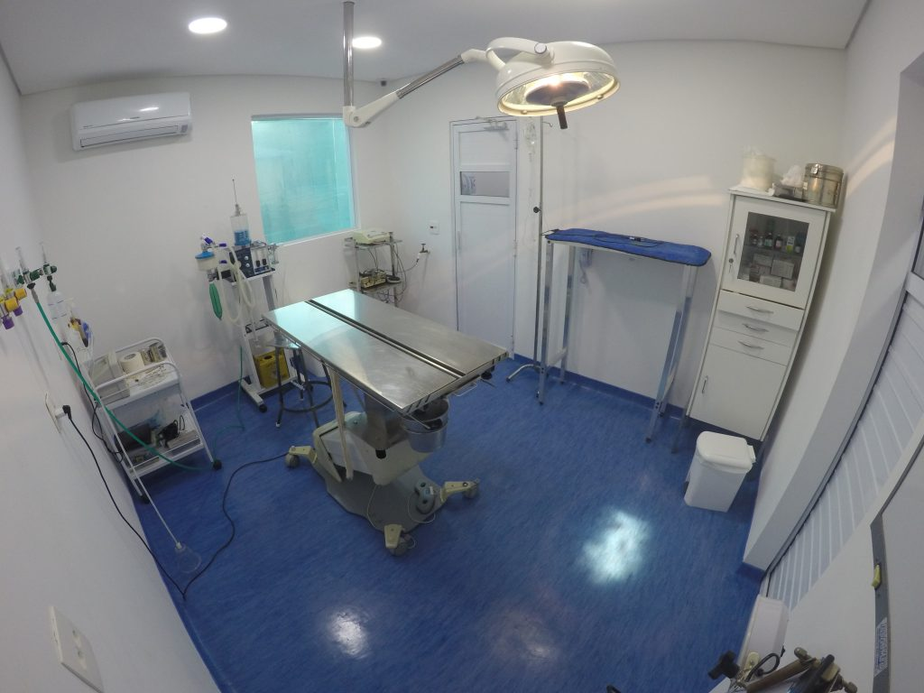 hospital veterinario horas sp
